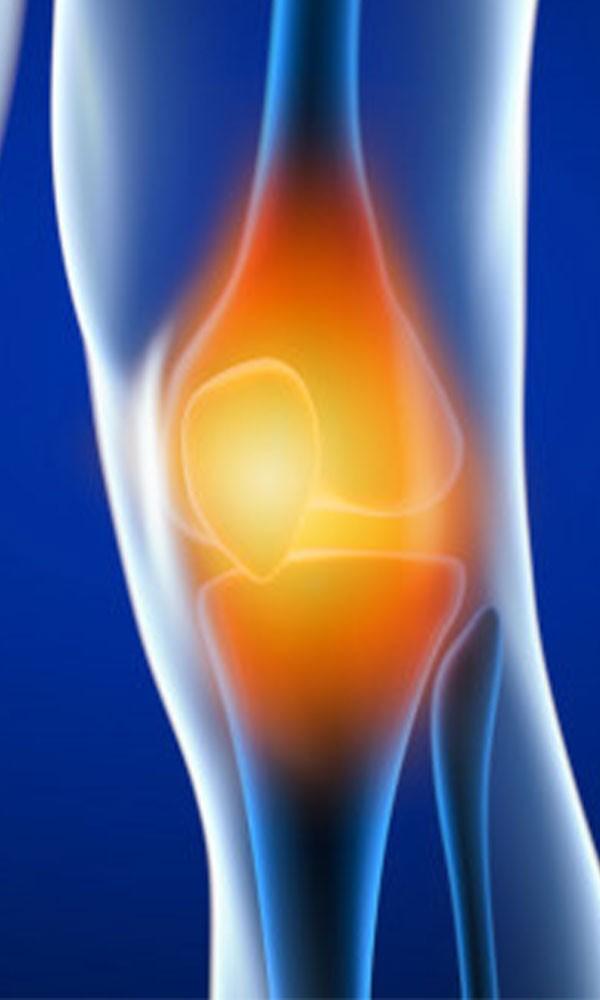 Programme de renforcement musculaire